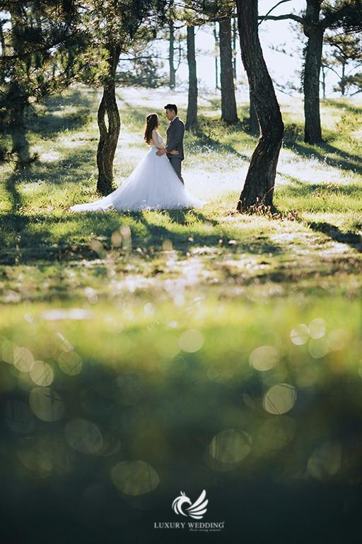 Các địa điểm chụp ảnh cưới nha trang đẹp 1