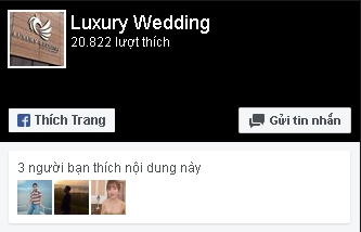 Luxury Wedding