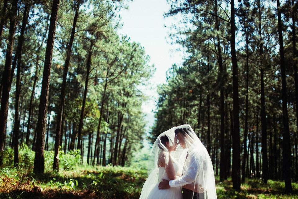chụp ảnh cưới đồi thông