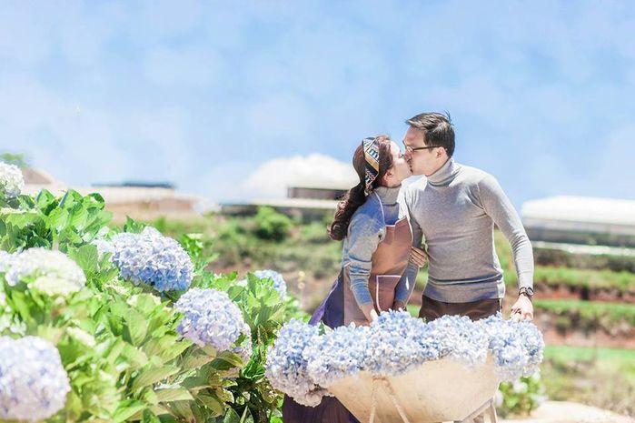 Chụp ảnh cưới cánh đồng hoa cẩm tú cầu đà lạt